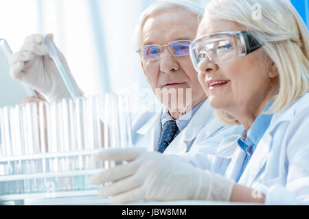 Senior couple of scientists working with test tubes in laboratory - Stock Photo