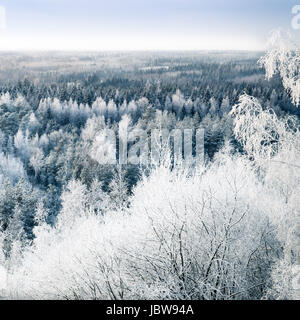 Scenic landscape with snow trees and sunset at cold winter day - Stock Photo