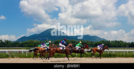 The race for the prize of the Jockeys-kluba in Pyatigorsk. - Stock Photo