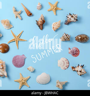 Creative layout made of different colorful seashells and greeting card - Stock Photo