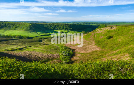Hole of Horcum in the North York Moors with view of farmland, moorland, and vegetation on a fine spring morning - Stock Photo
