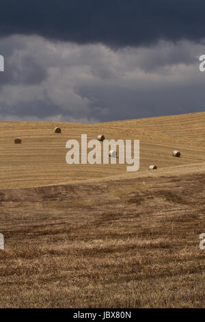 Six Bales- A dreamy landscape of blue, cloud filled skies and rolling, sunlit barley fields. Six bales of straw - Stock Photo