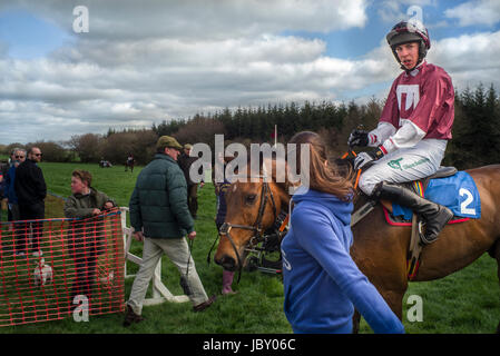 race totes taking bets at Point to Point horse jumping, Eggesford Hunt, England uk - Stock Photo