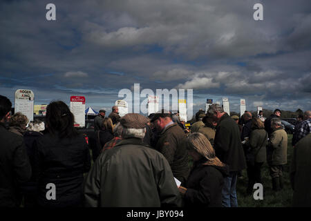 dark sky,over croud and race track totes,race totes taking bets at Point to Point horse jumping, Eggesford Hunt, - Stock Photo