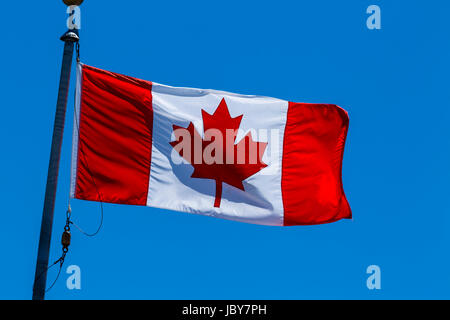 Canadian flag on flagpole - Stock Photo