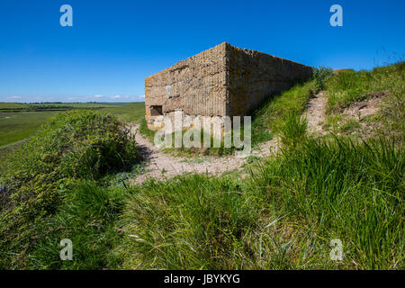 A panoramic view showing World War II defences at the estuary in Cuckmere Haven, situated in the Seven Sisters Country - Stock Photo