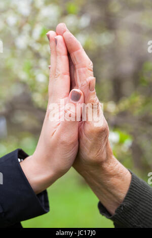Close up picture of a young woman's hands holding an elderly female's hands - Stock Photo