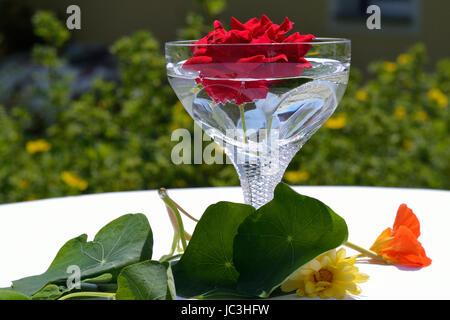 schwimmende rote Rose in einer Vase und Blumen als Tischschmuck - Stock Photo