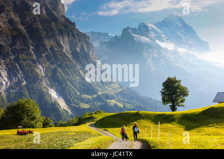 Two hikers and a dog are walking through a farmers pasture down into the valley of Grindelwald in the Swiss Alps. - Stock Photo