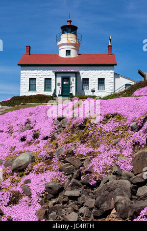 Iceplant blooms at the Battery Point Lighthouse which sits outside the Crescent City harbor along the Northern california - Stock Photo