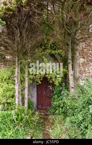 Mysterious arched door with Overgrown plants, Isle of Wight, UK - Stock Photo
