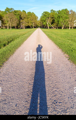Long shadow of photographer on straight and narrow country road leading up to forest and a tunnel of foliage far away.