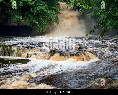 Peaty Water after Heavy Rain in West Burton Waterfall or Cauldron Falls at West Burton Wensleydale Yorkshire Dales - Stock Photo