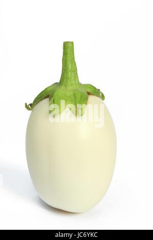 Weiße Aubergine (Solanum melongena) freigestellt vor weißem Hintergrund - Stock Photo