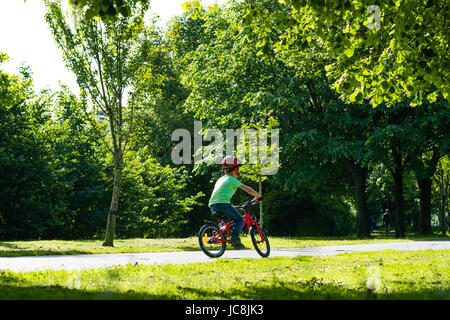 Aberystwyth Wales UK, Wednesday 14 June 2017 UK Weather: A child cycling to school along the tree-lined Plascrug - Stock Photo