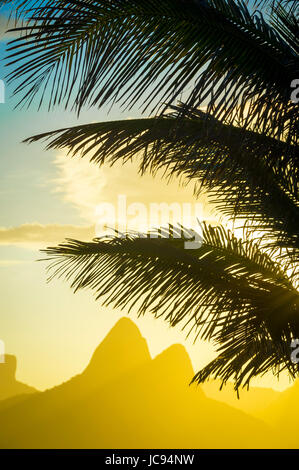 Golden sunset lights up the silhouette of palm fronds against the iconic outline of Two Brothers Mountain in Ipanema - Stock Photo