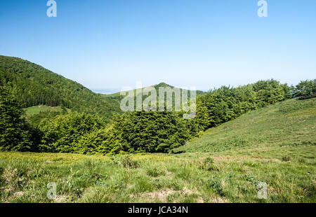mountain meadow with trees, hills on the background and clear sky near Sedlo za Kraviarskym pass in Mala Fatra mountains - Stock Photo