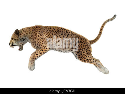 3D rendering of a cheetah jumping isolated on white background - Stock Photo