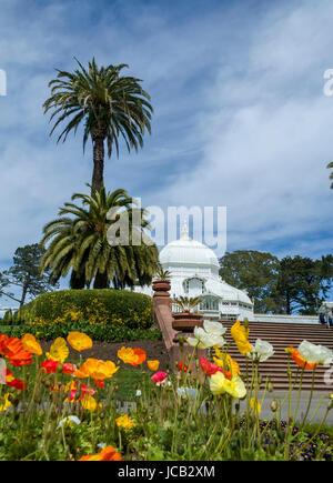 This is an image of the Conservatory of Flowers located in San Francisco's Golden Gate Park. The Conservatory feature - Stock Photo
