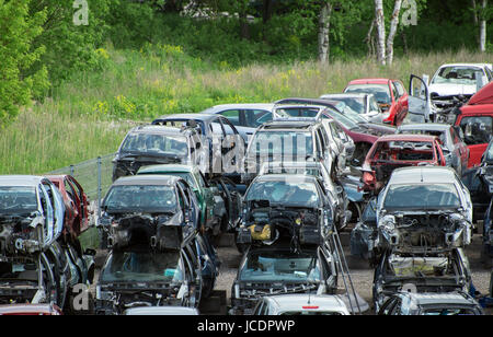 Old vehicles in scrap yard. - Stock Photo