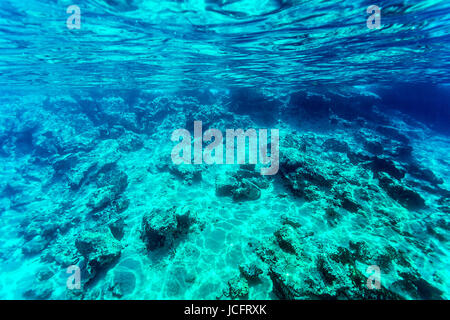 Beautiful seabed background, gorgeous sea bottom through transparent blue water, majestic marine life, travel and - Stock Photo
