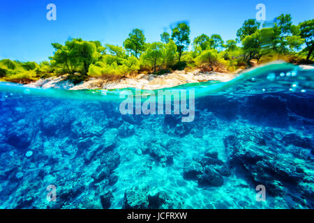 Beautiful undersea nature, gorgeous sea bottom through transparent blue water near tropical island, majestic marine - Stock Photo