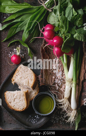 Rustic lunch breakfast with fresh young vegetables radish, spring onion, garlic leaves, salt, olive oil and bread - Stock Photo
