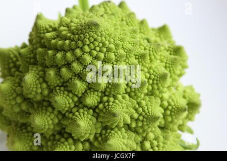 Romanesco Broccoli on White background - Stock Photo