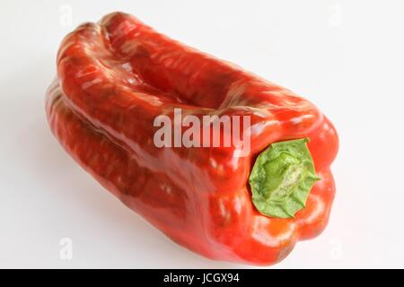 Red Pepper Close up on White background - Stock Photo
