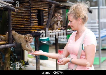 Phuket, Thailand, February 1, 2017: A woman is feeding a small monkey. - Stock Photo