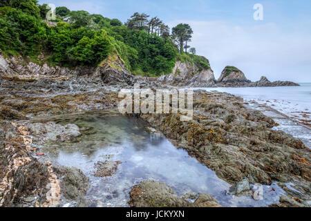 Lee Bay, Ilfracombe, Devon, England, UK - Stock Photo