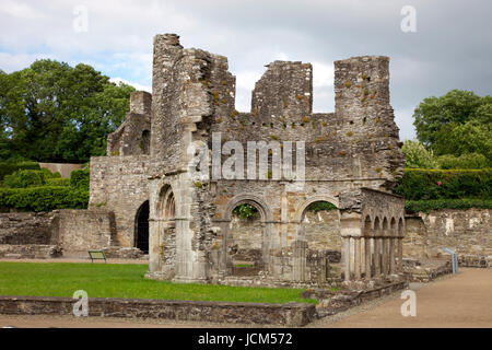 Lavabo in the ruins of Mellifont Abbey - Stock Photo
