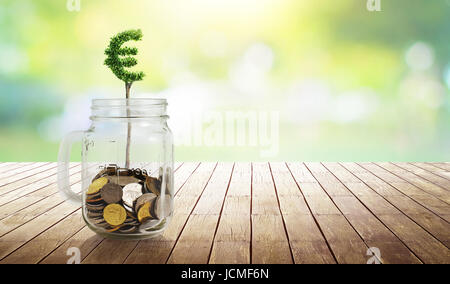 Coins in the glass with Euro shape plant growing ,savings,growing,investment,retirement and education concept . - Stock Photo