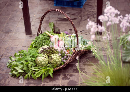 Basket of freshly picked vegetables including artichokes, garlic and asparagus in a glasshouse UK - Stock Photo