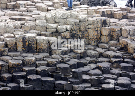 On the Giant's Causeway, Northern Ireland - Stock Photo