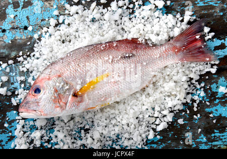 Fresh red snapper fish from fishery market with salt set on wooden plate. - Stock Photo
