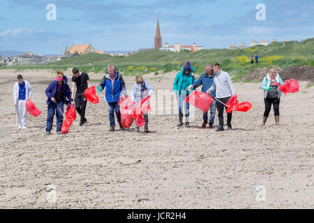Volunteers picking up litter on Troon Beach Scotland - Stock Photo