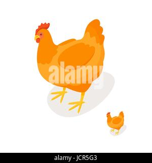Isometric 3d vector illustration of chicken. Front view. Icon for web. Isolated on white background. - Stock Photo