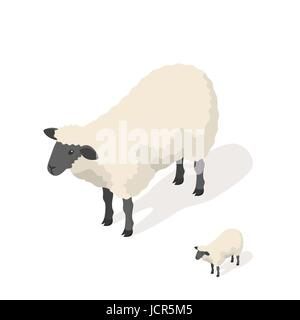 Isometric 3d vector illustration of sheep isolated on white background. Icon for web. Front view. - Stock Photo