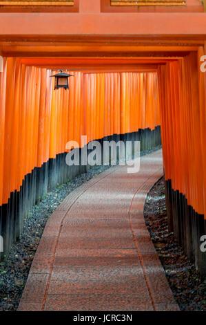 Fushimi Inari shinto shrine, Kyoto, path of torii - Stock Photo