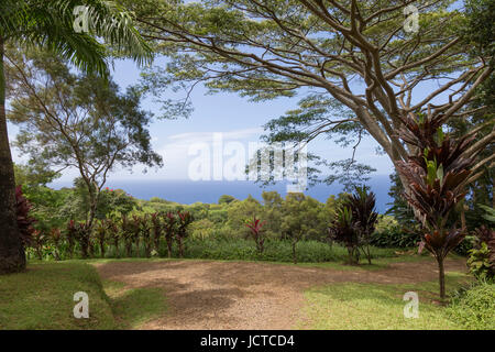Scenic view from garden on the road to Hana. - Stock Photo