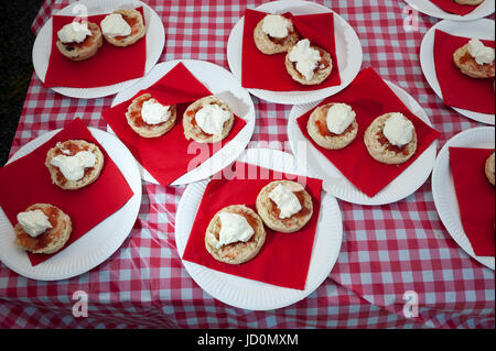 Scones with cream and jam on paper plates on a table covered in a red and white plastic tablecloth. - Stock Photo