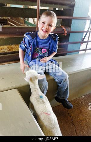 Children bottle feeding lambs at Putlake Adventure Farm near Swanage in Dorset - Stock Photo