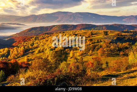 cold morning fog with golden hot sunrise in the valley of Carpathian mountain range. trees with colorful foliage - Stock Photo