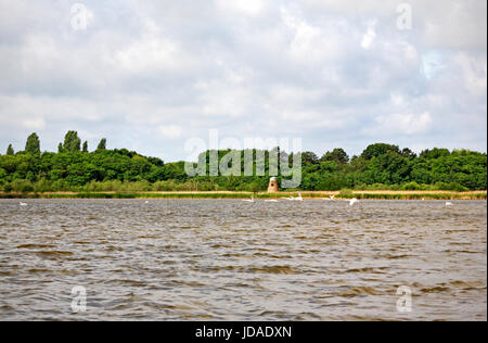 A view of a corner of Hickling Broad and the disused Swim Coots Drainage Mill on the Norfolk Broads near Hickling, - Stock Photo