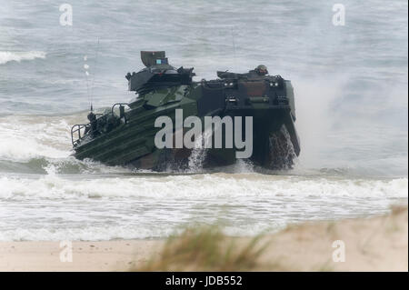 An American Assault Amphibious Vehicle AAV-7 is landing on the beach during the 45th edition of Exercise BALTIC - Stock Photo