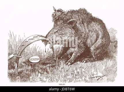 Punch cartoon by Leonard Raven-Hill German Hog with nose in trap, Battle of Verdun, 1916 - Stock Photo