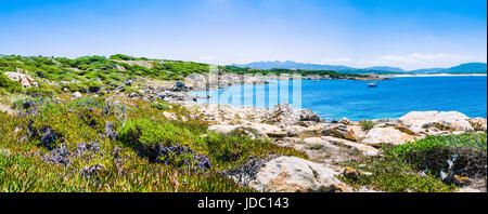 Beautiful costline with granite rocks and amazing azure water on Porto Pollo, Sardinia, Italy. - Stock Photo