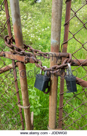 Padlocks on fence gate. lock, locked, padlock, secure, keep out,  concept, padlocked, closed, protection, security, - Stock Photo