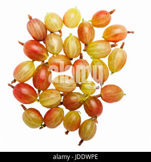 Red Gooseberries on a white background - Stock Photo